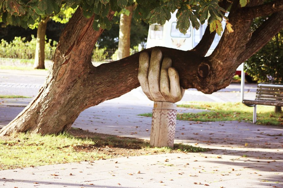 Statue of an arm holding a tree.