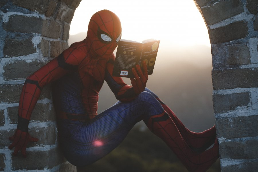 Geht es um Data Literacy? In jedem Fall: Spidermann liest
